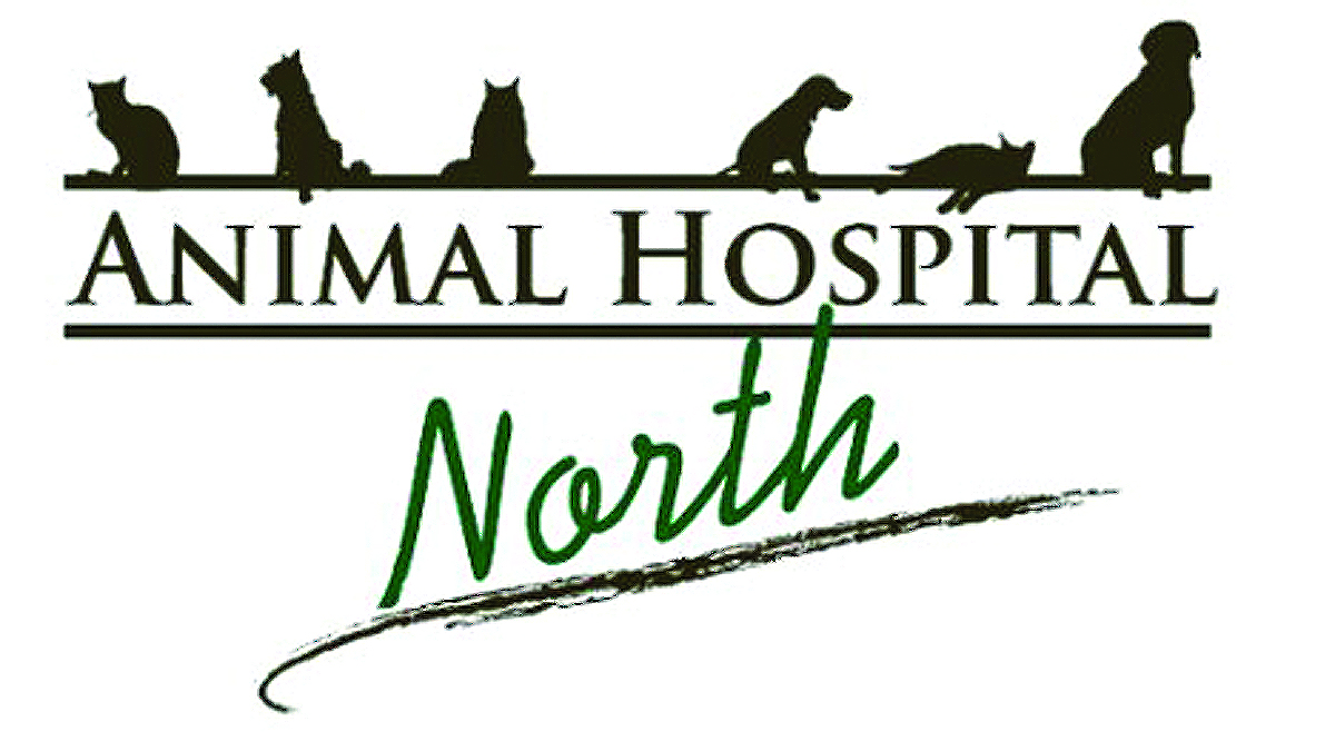 Animal Hospital North, Hickory NC
